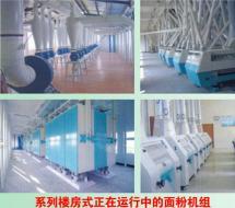 楼房式面粉加工设备