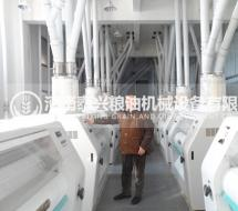 300吨级面粉加工设备机组