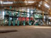 印度尼西亚雅加达200吨玉米加工设备安装案例
