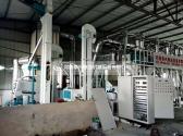 贵州威宁草海日处理30吨荞麦加制粉设备